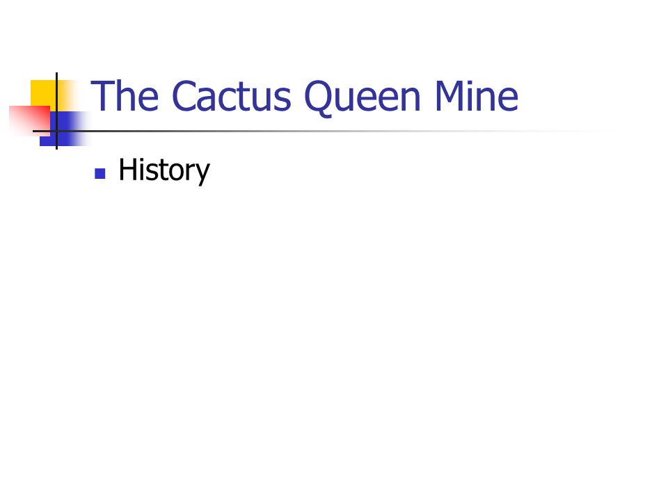 The Cactus Queen Mine History