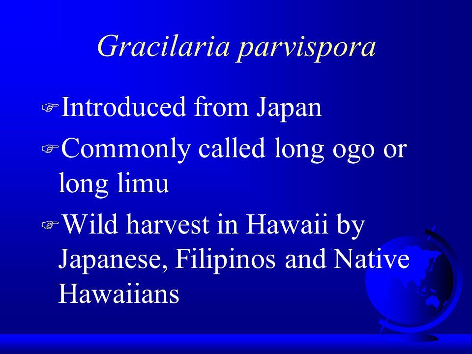 Goals of the Moloka'i Project F Cottage industry for Native Hawaiians in rural Hawaii.