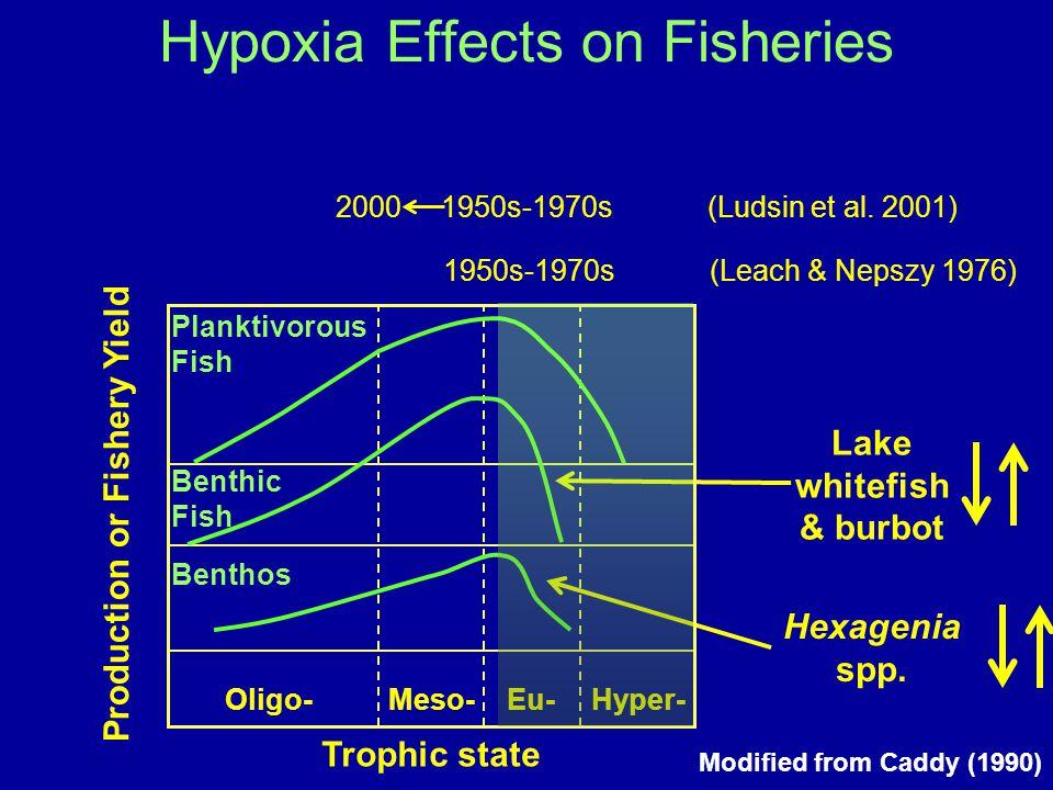 Hexagenia spp. Lake whitefish & burbot Oligo-Meso-Eu-Hyper- Trophic state Production or Fishery Yield Benthos Benthic Fish Planktivorous Fish Modified
