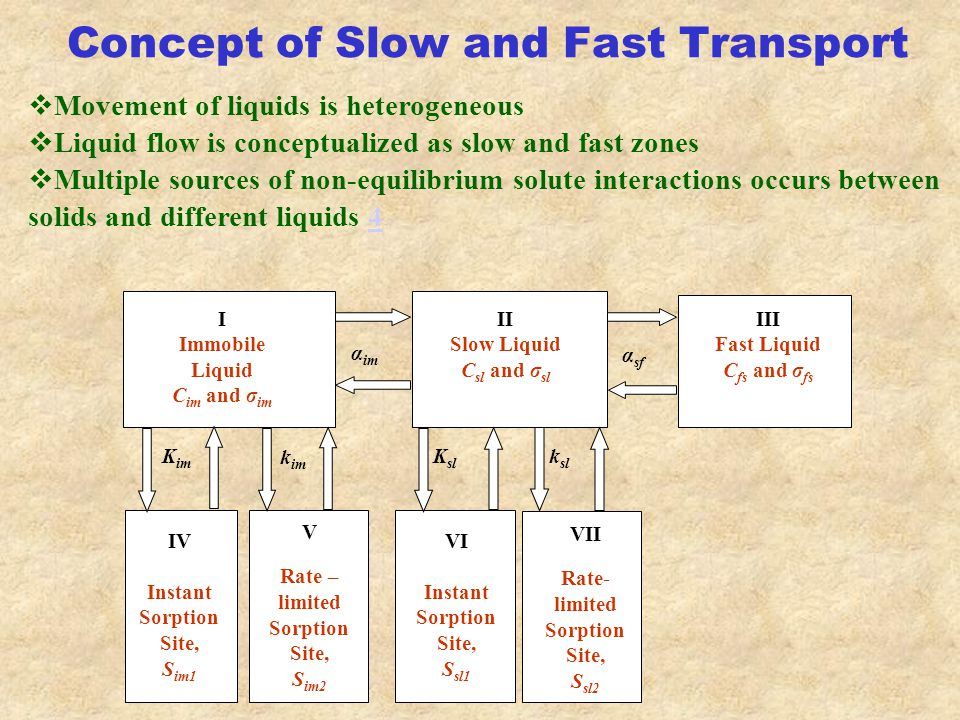 Concept of Slow and Fast Transport  Movement of liquids is heterogeneous  Liquid flow is conceptualized as slow and fast zones  Multiple sources of non-equilibrium solute interactions occurs between solids and different liquids 44 I Immobile Liquid C im and σ im II Slow Liquid C sl and σ sl III Fast Liquid C fs and σ fs IV Instant Sorption Site, S im1 V Rate – limited Sorption Site, S im2 VI Instant Sorption Site, S sl1 VII Rate- limited Sorption Site, S sl2 K im k im K sl k sl α im α sf