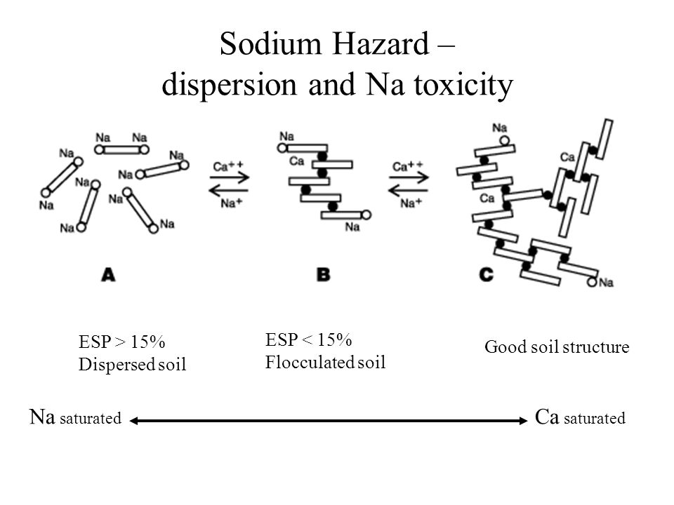 ESP > 15% Dispersed soil ESP < 15% Flocculated soil Good soil structure Na saturated Ca saturated Sodium Hazard – dispersion and Na toxicity