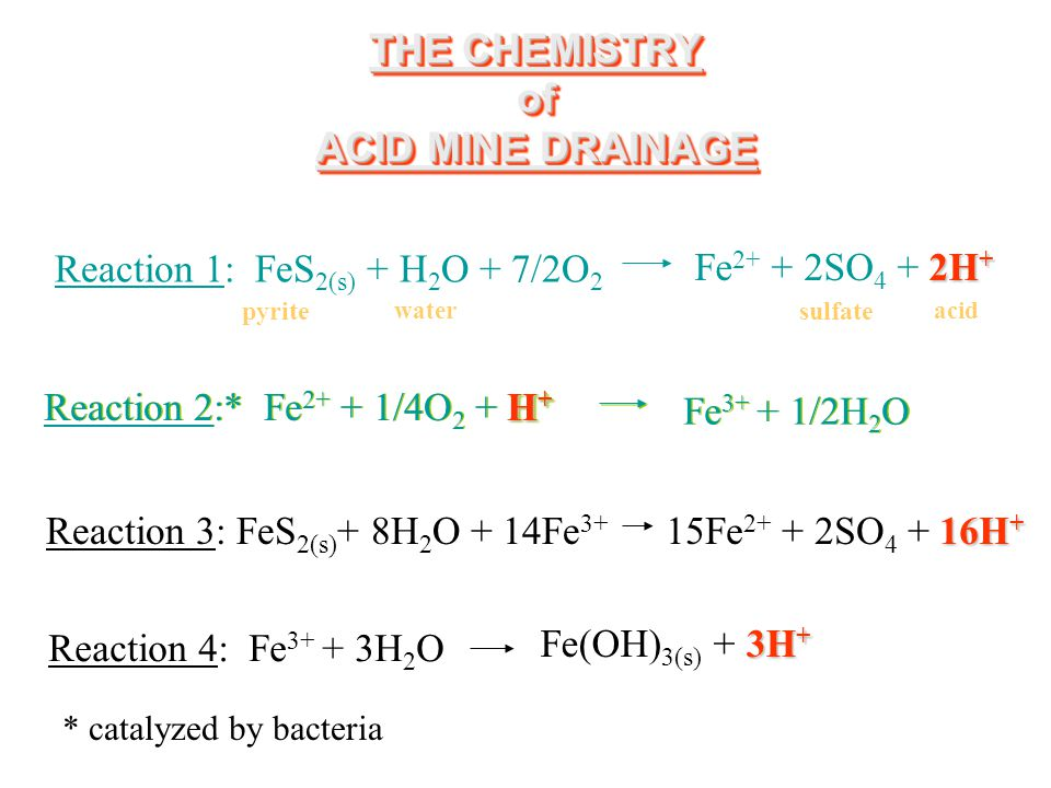 THE CHEMISTRY of ACID MINE DRAINAGE Reaction 1: FeS 2(s) + H 2 O + 7/2O 2 2H + Fe 2+ + 2SO 4 + 2H + H + Reaction 2:* Fe 2+ + 1/4O 2 + H + Fe 3+ + 1/2H 2 O Reaction 3: FeS 2(s) + 8H 2 O + 14Fe 3+ 16H + 15Fe 2+ + 2SO 4 + 16H + Reaction 4: Fe 3+ + 3H 2 O 3H + Fe(OH) 3(s) + 3H + pyrite water sulfate acid * catalyzed by bacteria