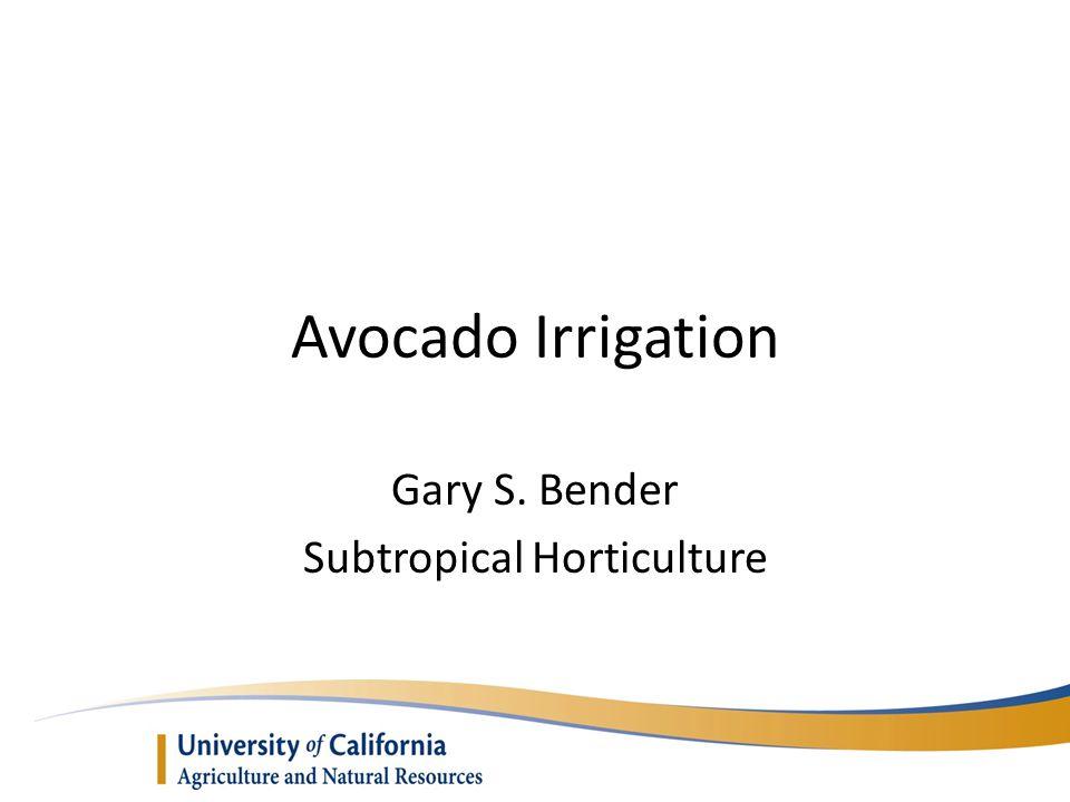 Avocado Irrigation Gary S. Bender Subtropical Horticulture