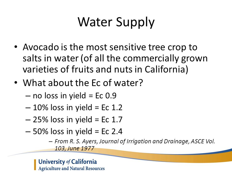 Water Supply Avocado is the most sensitive tree crop to salts in water (of all the commercially grown varieties of fruits and nuts in California) What about the Ec of water.