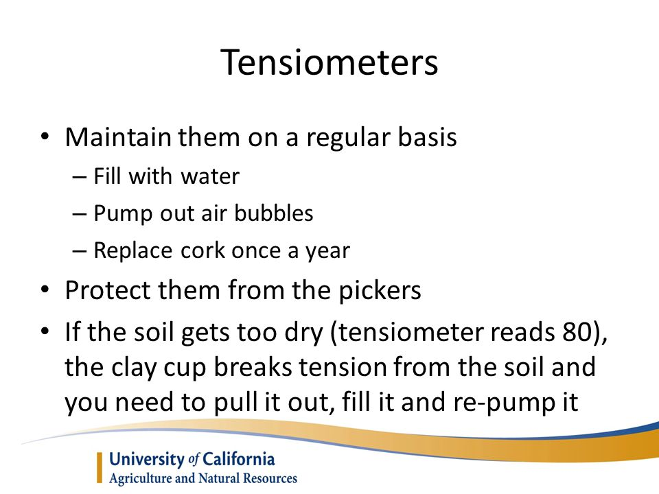 Tensiometers Maintain them on a regular basis – Fill with water – Pump out air bubbles – Replace cork once a year Protect them from the pickers If the soil gets too dry (tensiometer reads 80), the clay cup breaks tension from the soil and you need to pull it out, fill it and re-pump it