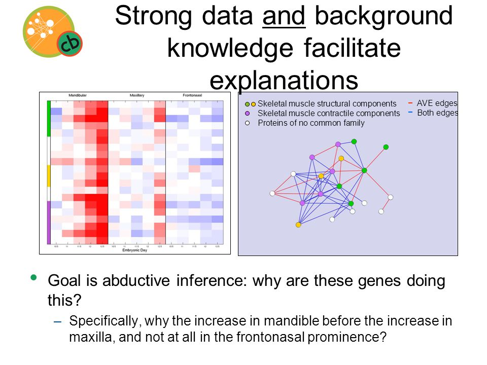 AVE edges Both edges Skeletal muscle structural components Skeletal muscle contractile components Proteins of no common family Strong data and background knowledge facilitate explanations Goal is abductive inference: why are these genes doing this.