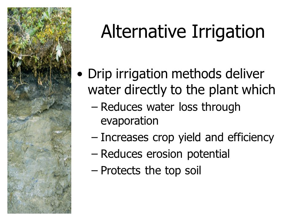 Alternative Irrigation Drip irrigation methods deliver water directly to the plant which –Reduces water loss through evaporation –Increases crop yield and efficiency –Reduces erosion potential –Protects the top soil