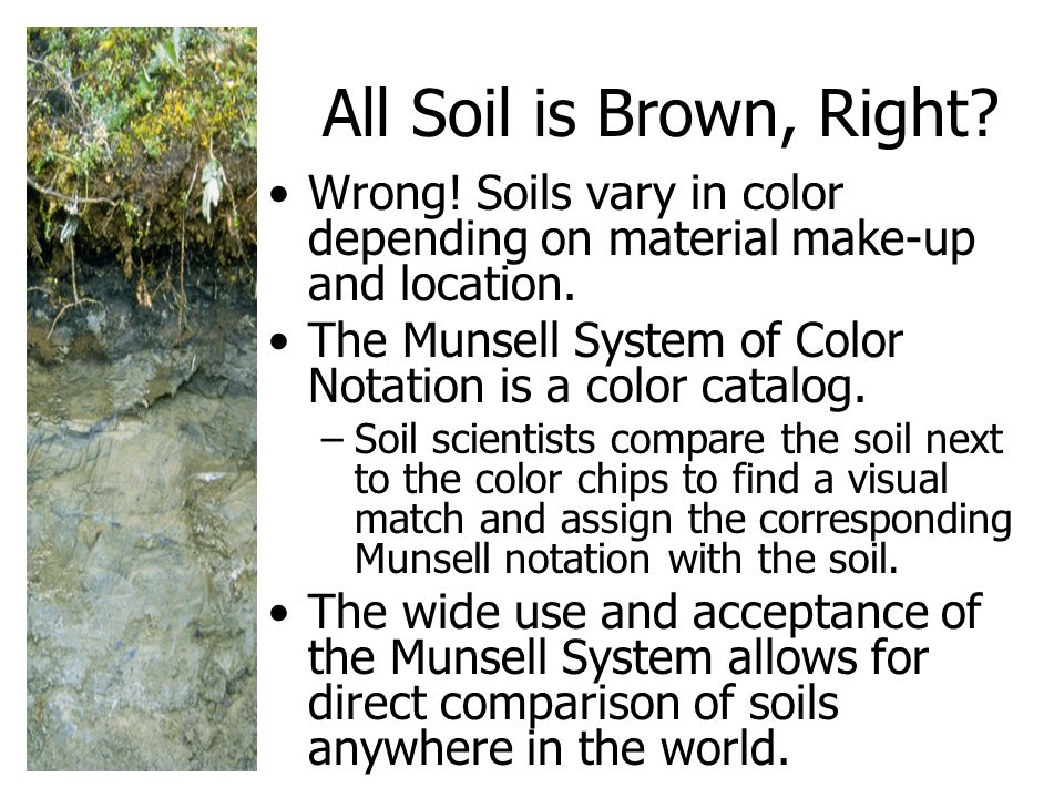 All Soil is Brown, Right.Wrong. Soils vary in color depending on material make-up and location.