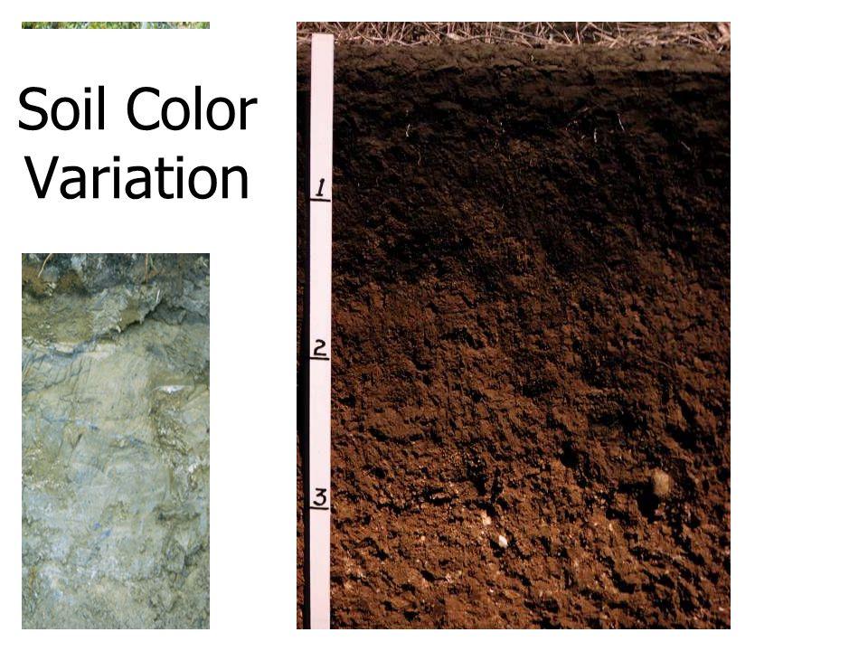 Soil Color Variation