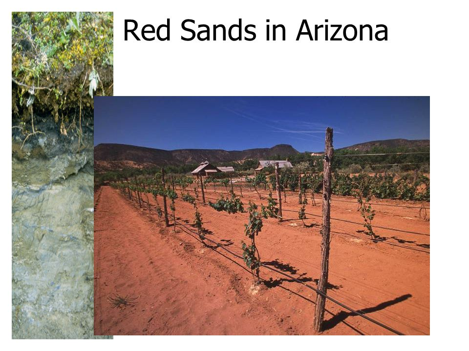 Red Sands in Arizona