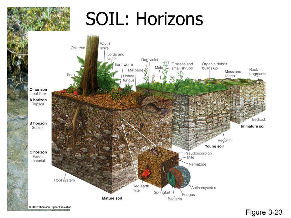 SOIL: Horizons Figure 3-23