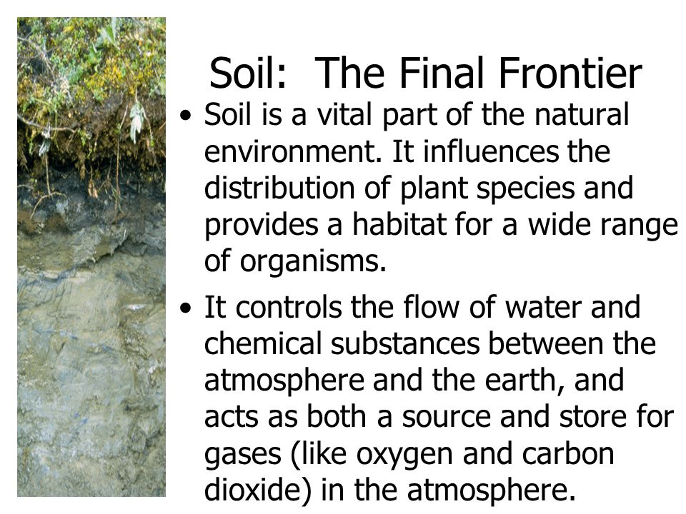 Soil: The Final Frontier Soil is a vital part of the natural environment.