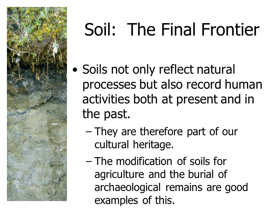 Soil: The Final Frontier Soils not only reflect natural processes but also record human activities both at present and in the past.