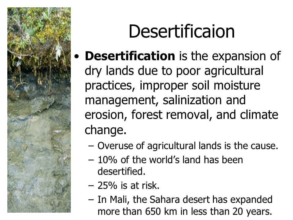 Desertificaion Desertification is the expansion of dry lands due to poor agricultural practices, improper soil moisture management, salinization and erosion, forest removal, and climate change.