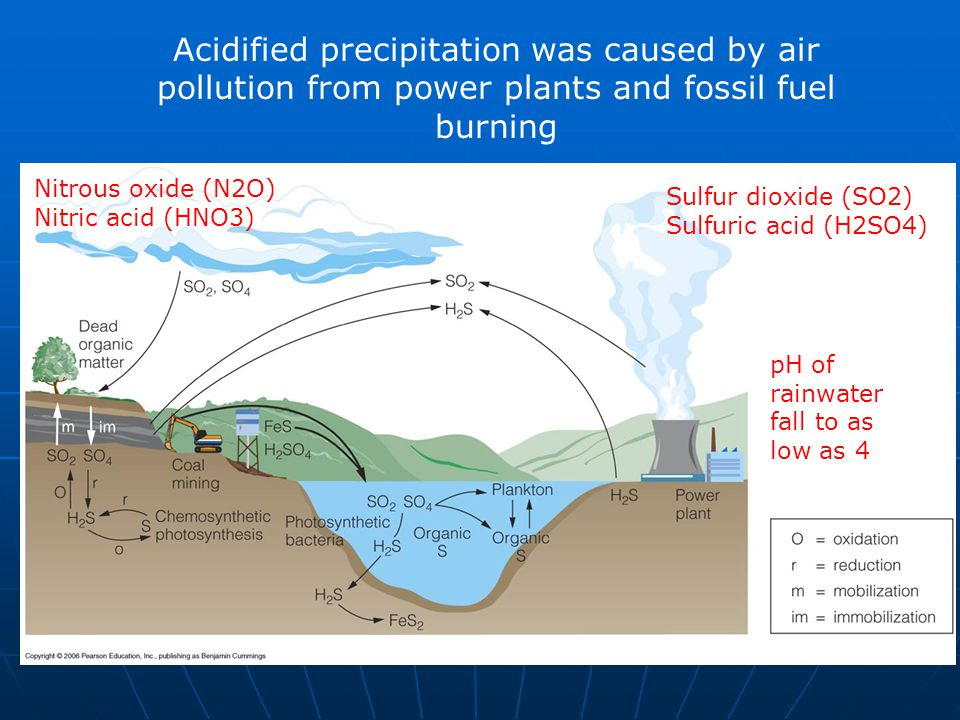 Acidified precipitation was caused by air pollution from power plants and fossil fuel burning Sulfur dioxide (SO2) Sulfuric acid (H2SO4) Nitrous oxide