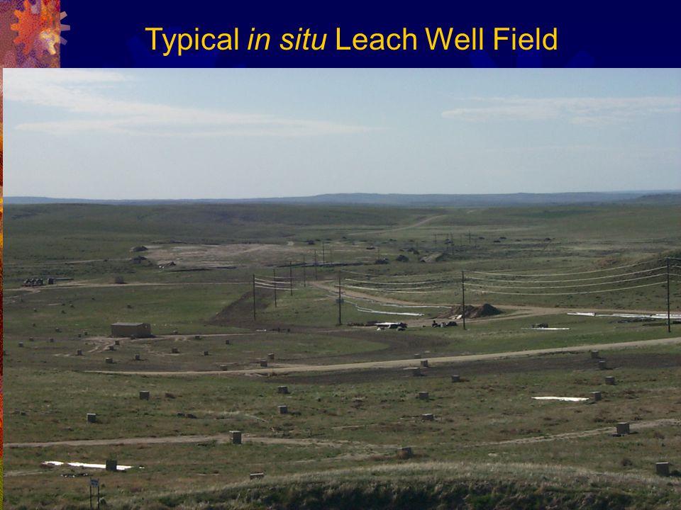 Typical in situ Leach Well Field