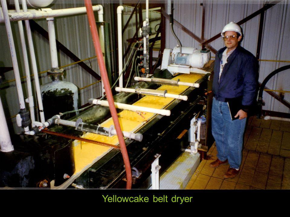 Yellowcake belt dryer