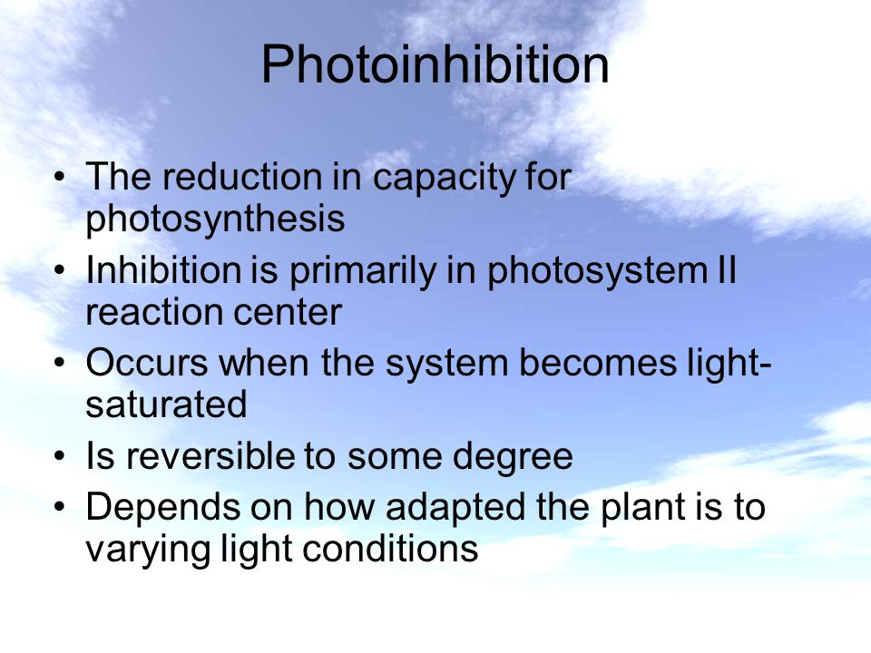 Photoinhibition The reduction in capacity for photosynthesis Inhibition is primarily in photosystem II reaction center Occurs when the system becomes