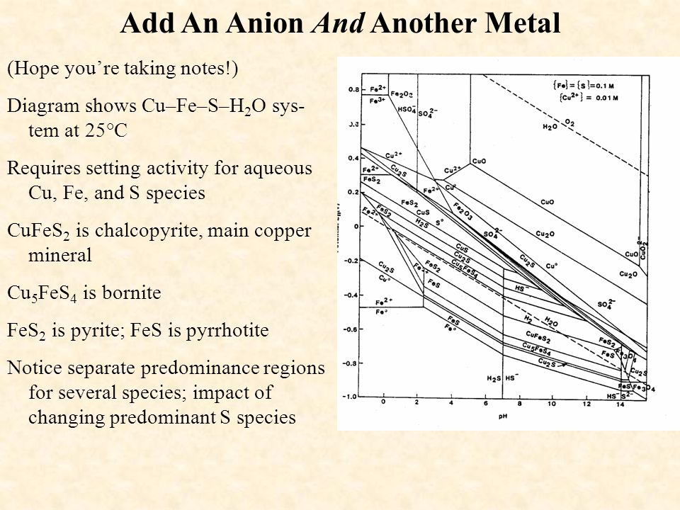 Add An Anion And Another Metal (Hope you're taking notes!) Diagram shows Cu–Fe–S–H 2 O sys- tem at 25°C Requires setting activity for aqueous Cu, Fe,