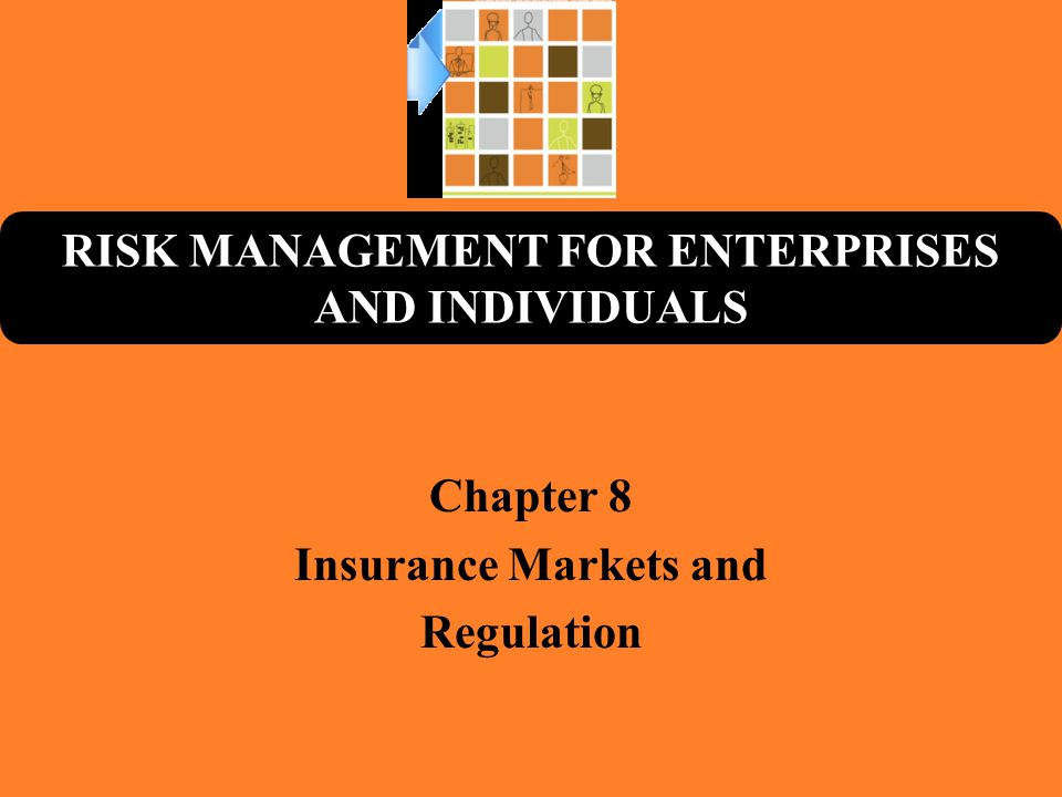 RISK MANAGEMENT FOR ENTERPRISES AND INDIVIDUALS Chapter 8 Insurance Markets and Regulation