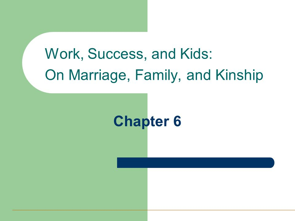 Chapter 6 Work, Success, and Kids: On Marriage, Family, and Kinship
