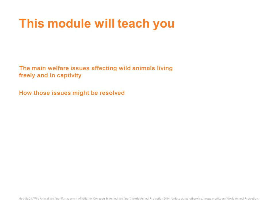 Module 21: Wild Animal Welfare: Management of Wildlife Concepts in Animal Welfare © World Animal Protection 2014.