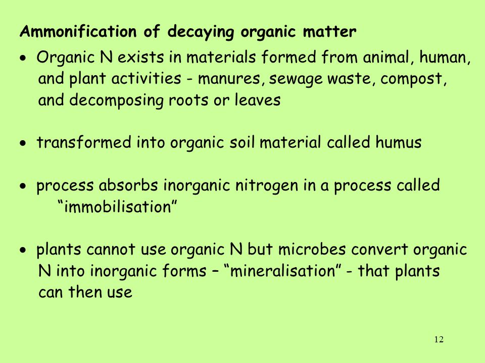 12 Ammonification of decaying organic matter  Organic N exists in materials formed from animal, human, and plant activities - manures, sewage waste, compost, and decomposing roots or leaves  transformed into organic soil material called humus  process absorbs inorganic nitrogen in a process called immobilisation  plants cannot use organic N but microbes convert organic N into inorganic forms – mineralisation - that plants can then use