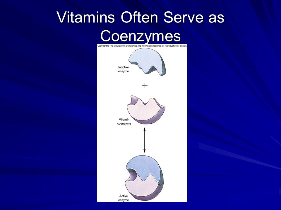 Vitamin Classification Fat-soluble vitamins –Dissolve in substances such as ether and benzene but not readily in water –Include vitamins A, D, E, and K Water-soluble vitamins –Vitamins that dissolve in water –Include B vitamins and vitamin C