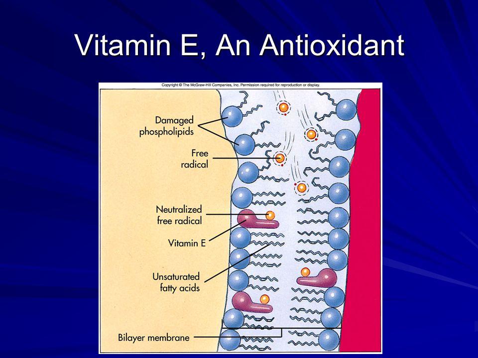 Vitamin E, An Antioxidant