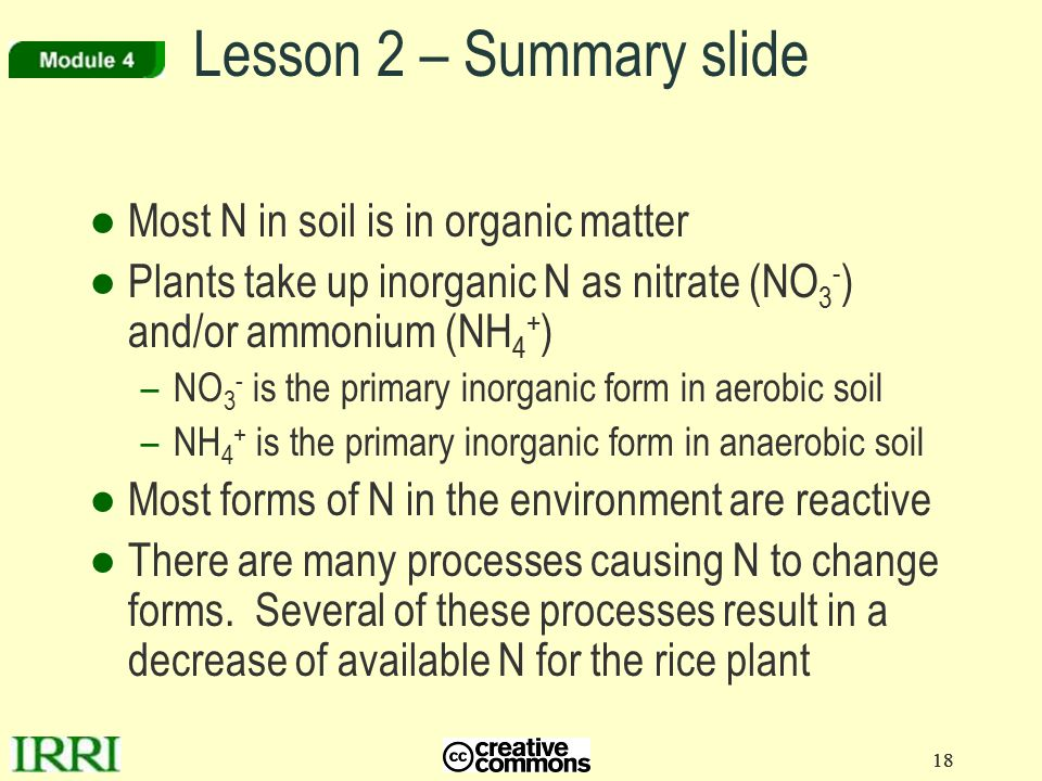 18 Lesson 2 – Summary slide ●Most N in soil is in organic matter ●Plants take up inorganic N as nitrate (NO 3 - ) and/or ammonium (NH 4 + ) –NO 3 - is the primary inorganic form in aerobic soil –NH 4 + is the primary inorganic form in anaerobic soil ●Most forms of N in the environment are reactive ●There are many processes causing N to change forms.
