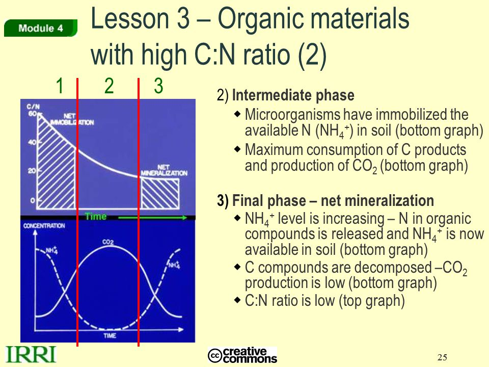 25 2) Intermediate phase  Microorganisms have immobilized the available N (NH 4 + ) in soil (bottom graph)  Maximum consumption of C products and pr