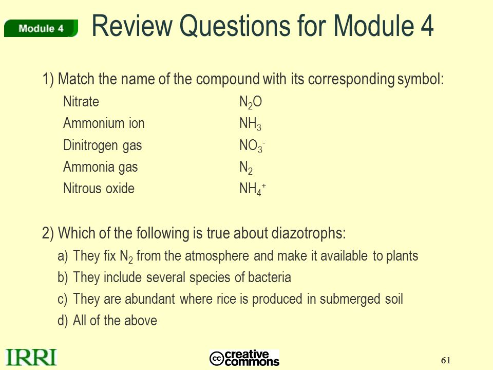 61 Review Questions for Module 4 1) Match the name of the compound with its corresponding symbol: NitrateN 2 O Ammonium ionNH 3 Dinitrogen gasNO 3 - A