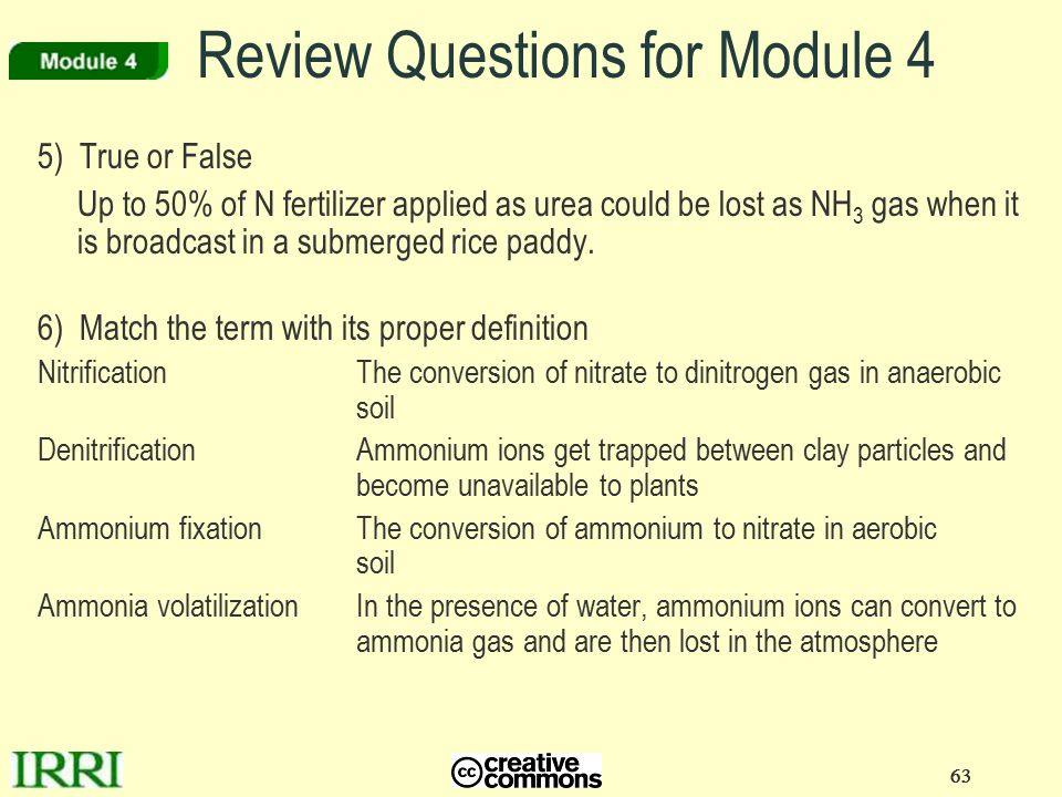 63 Review Questions for Module 4 5) True or False Up to 50% of N fertilizer applied as urea could be lost as NH 3 gas when it is broadcast in a submer