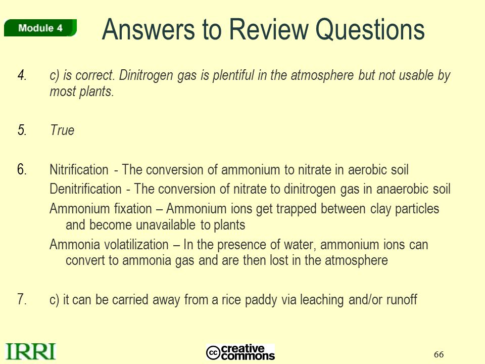 66 4.c) is correct. Dinitrogen gas is plentiful in the atmosphere but not usable by most plants. 5. True 6.Nitrification- The conversion of ammonium t