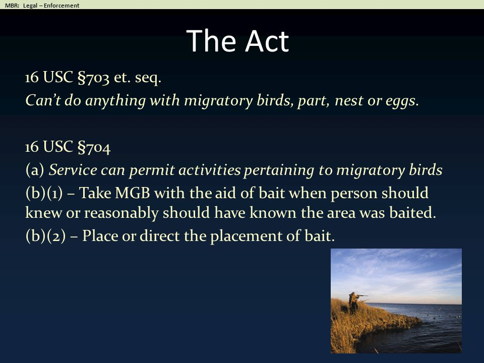 The Act 16 USC §703 et.seq. Can't do anything with migratory birds, part, nest or eggs.