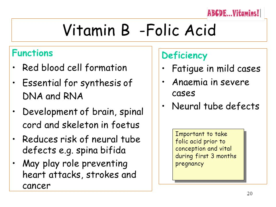 20 Vitamin B -Folic Acid Functions Red blood cell formation Essential for synthesis of DNA and RNA Development of brain, spinal cord and skeleton in foetus Reduces risk of neural tube defects e.g.