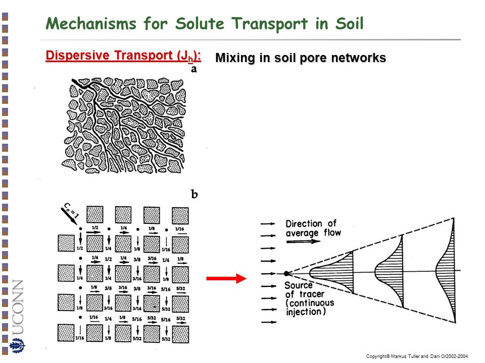 Copyright© Markus Tuller and Dani Or2002-2004 Mechanisms for Solute Transport in Soil Mixing in soil pore networks Dispersive Transport (J h ):