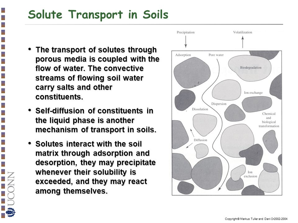 Copyright© Markus Tuller and Dani Or2002-2004 Analytical Solutions for the CDE Step Application of Solute Into Infinite (and Finite) Length Soil Columns: A group of analytical solutions applicable to a variety of initial and boundary conditions for solute front passage through a finite length soil column was presented by van Genuchten and Wierenga (1986).