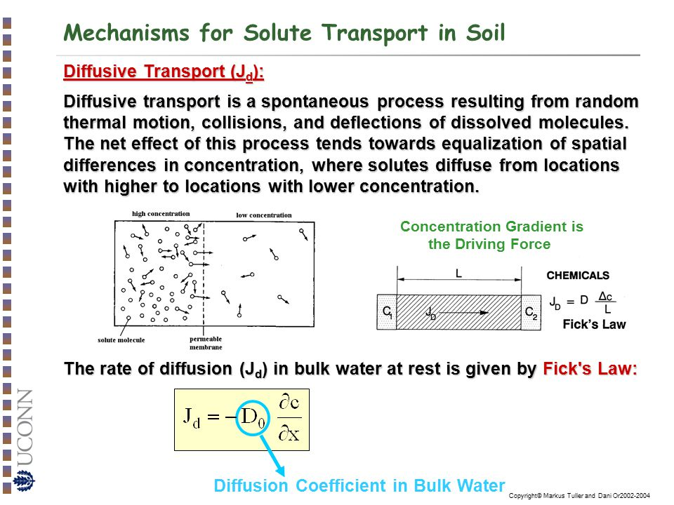 Copyright© Markus Tuller and Dani Or2002-2004 SOIL SALINITY Sources for Soil Salinity: Weathering of bedrockWeathering of bedrock Inorganic fertilizersInorganic fertilizers Soil amendments (e.g., composts and manures)Soil amendments (e.g., composts and manures) Irrigation water.Irrigation water.
