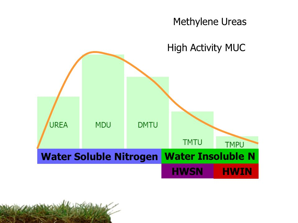 UREA Water Soluble NitrogenWater Insoluble N HWSNHWIN MDU Methylene Ureas DMTU TMTU TMPU High Activity MUC