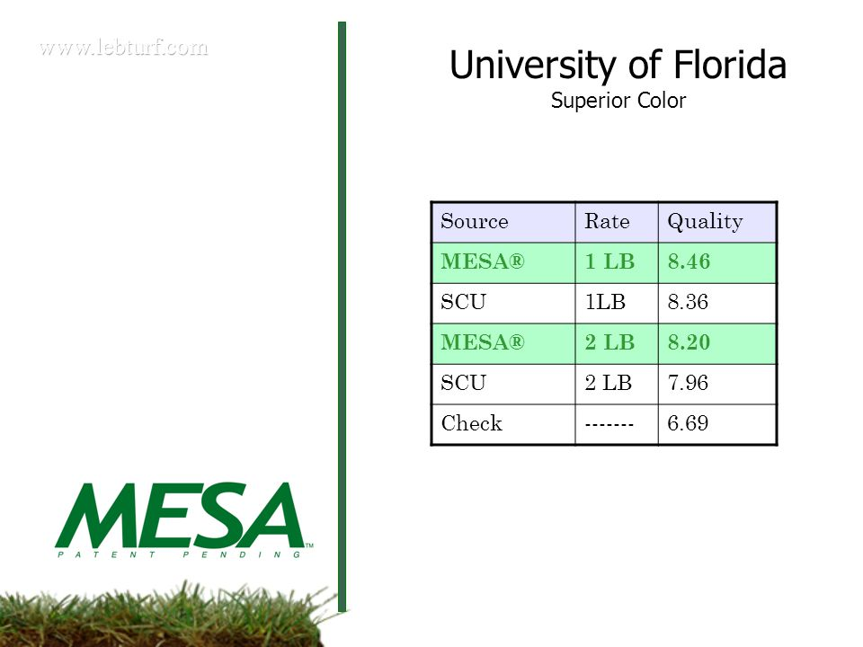 SourceRateQuality MESA®1 LB8.46 SCU1LB8.36 MESA®2 LB8.20 SCU2 LB7.96 Check-------6.69 University of Florida Superior Color
