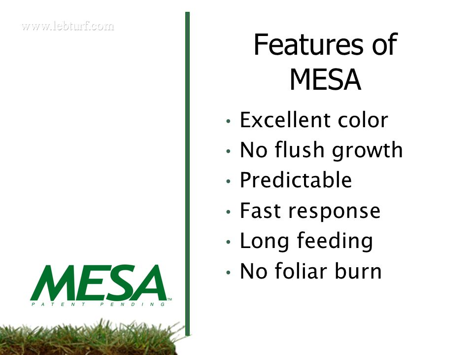 Features of MESA Excellent color No flush growth Predictable Fast response Long feeding No foliar burn