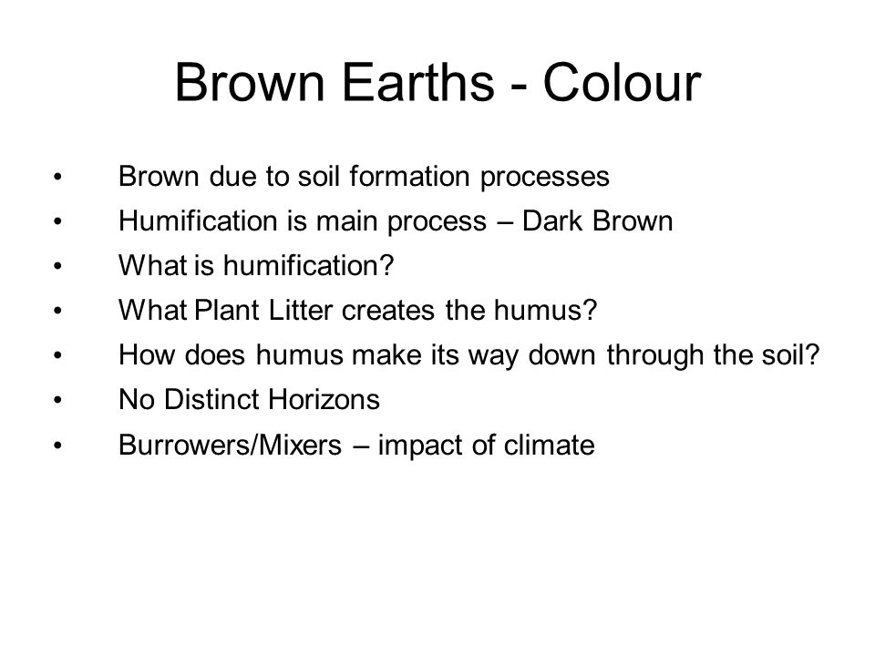 Brown Earths - Colour Brown due to soil formation processes Humification is main process – Dark Brown What is humification? What Plant Litter creates