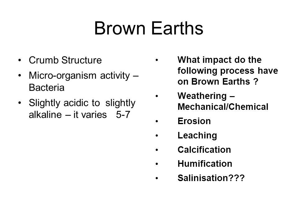 Brown Earths Crumb Structure Micro-organism activity – Bacteria Slightly acidic to slightly alkaline – it varies 5-7 What impact do the following proc