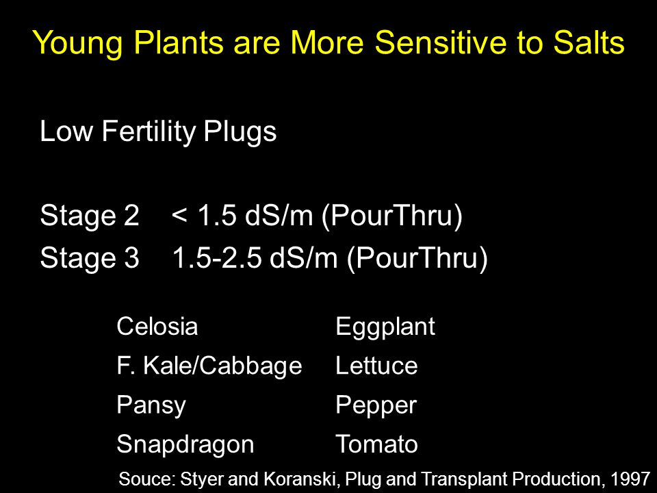 Low Fertility Plugs Stage 2< 1.5 dS/m (PourThru) Stage 31.5-2.5 dS/m (PourThru) Young Plants are More Sensitive to Salts CelosiaEggplant F. Kale/Cabba