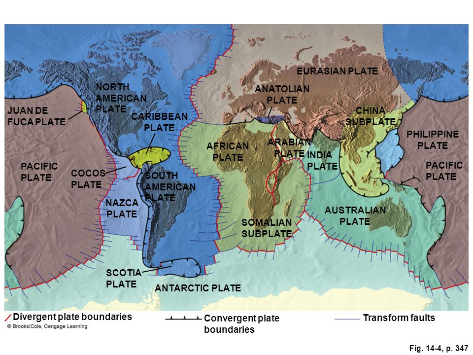 Fig. 14-4, p. 347 EURASIAN PLATE NORTH AMERICAN PLATE ANATOLIAN PLATE JUAN DE FUCA PLATE CARIBBEAN PLATE PHILIPPINE PLATE CHINA SUBPLATE AFRICAN PLATE