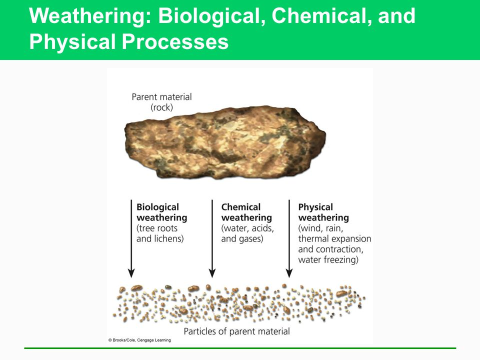 Weathering: Biological, Chemical, and Physical Processes