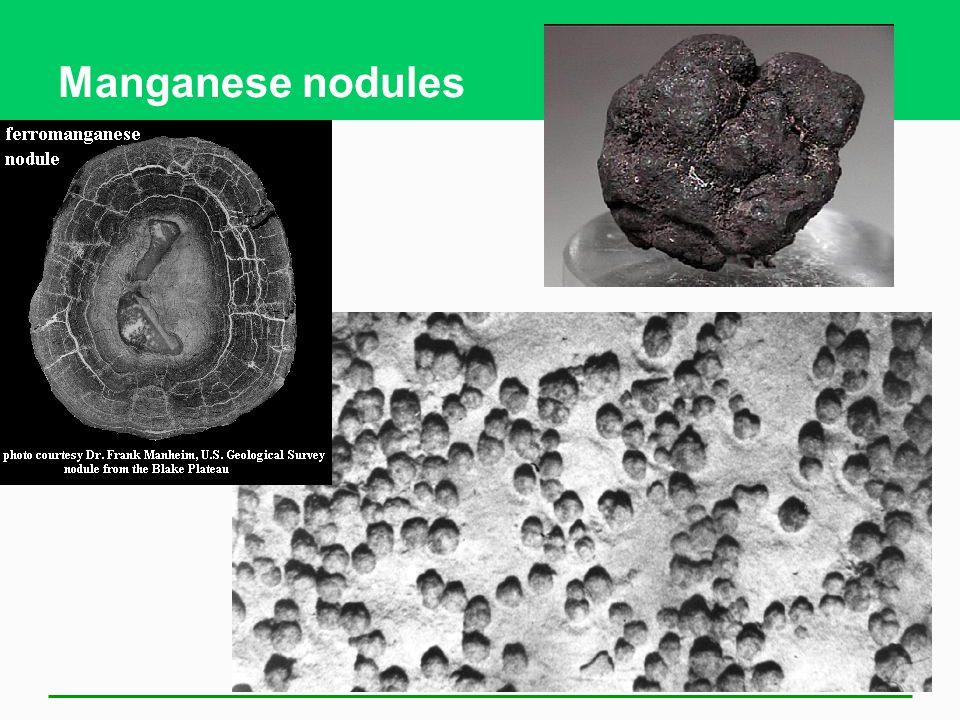 Manganese nodules