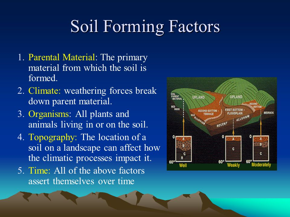 Soil Forming Factors 1.Parental Material: The primary material from which the soil is formed. 2.Climate: weathering forces break down parent material.