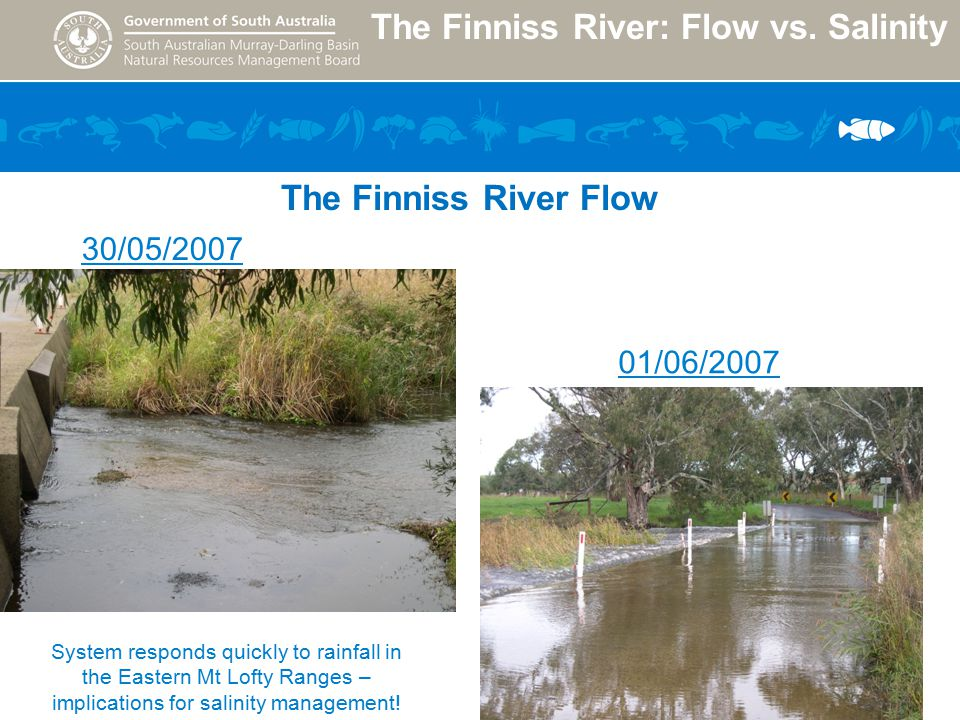 The Finniss River: Flow vs.